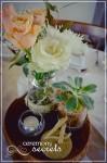ceremony-secrets-barrett-lane-reception-664-x-1000-2-lofi-2