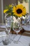 ceremony-secrets-tompkins-on-swan-wedding-reception3-2