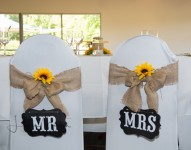 ceremony-secrets-tompkins-on-swan-wedding-reception8-2